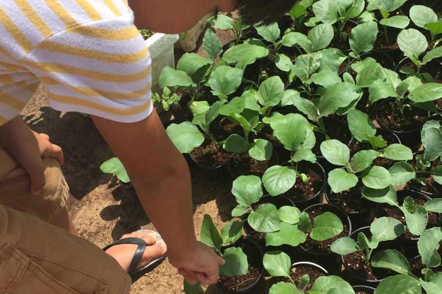 Gardening-for-Kids-Screen-free-activity-2-12-Unplugged-family-time-Header
