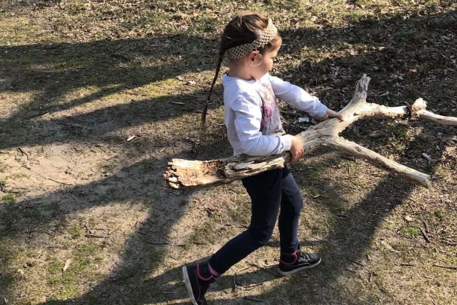 Kids Forest Rangers Nature-Activity-Screen-Free-Challenge-Unplugged-Family-Time-Header