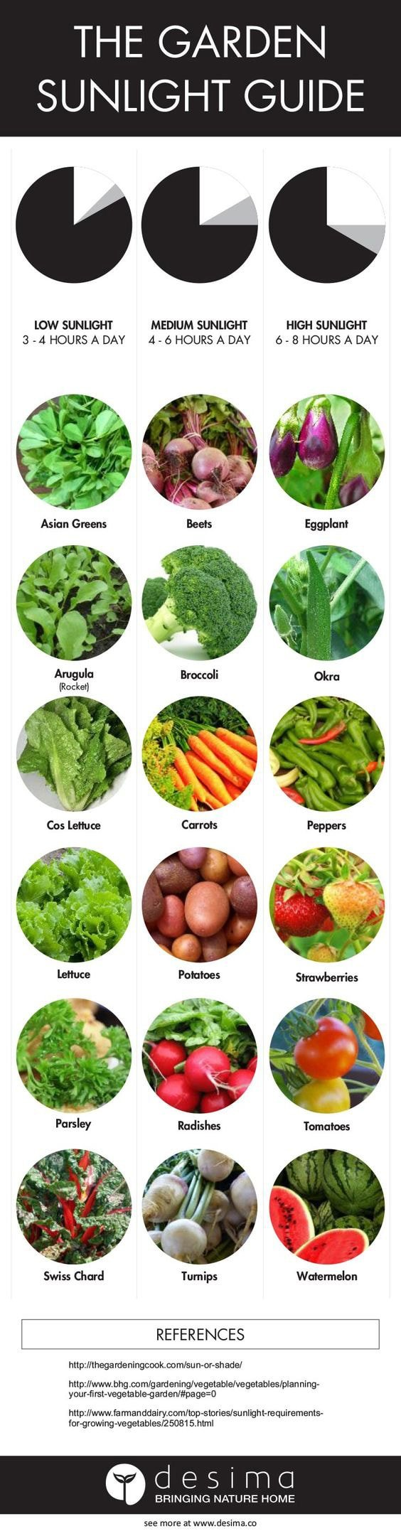 Kids Vegetable garden Sunshine Guide