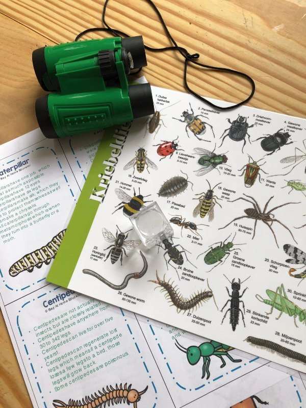 Scavenger-Hunt-Ideas-Going-on-a-Bug-Hunt-Prep-Unplugged-Family-Time